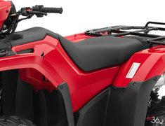 2019 Honda TRX500 Rubicon
