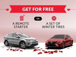 Fall in Love with Toyota
