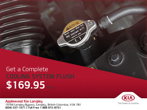 Get a Complete Cooling System Flush!