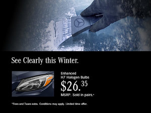 See Clearly this Winter