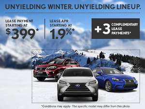 Enjoy everything winter has to offer with Lexus!