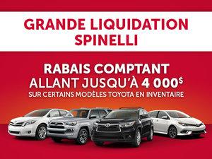 Grande Liquidation Spinelli