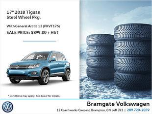 17'' 2018 Tiguan Steel Winter Wheel Package