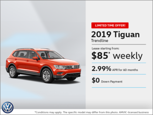 Get the 2019 Tiguan!