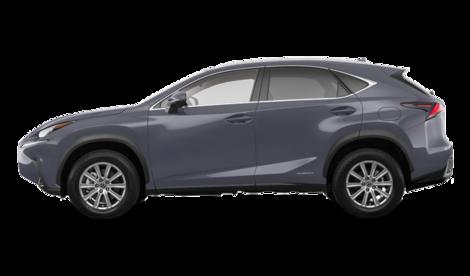 Lexus NX<br>2020