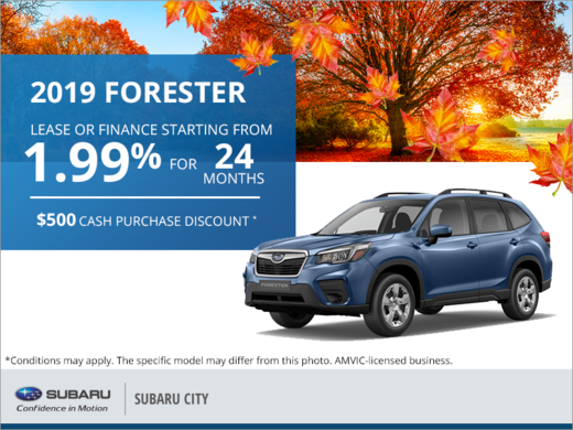 Get the 2019 Subaru Forester Today!