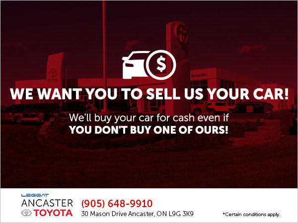 We'll Buy Your Car for CASH!