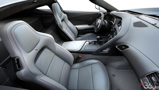 Grey Leather w/Sueded Microfibre Inserts