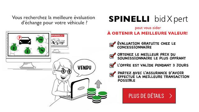 BidXpert Spinelli