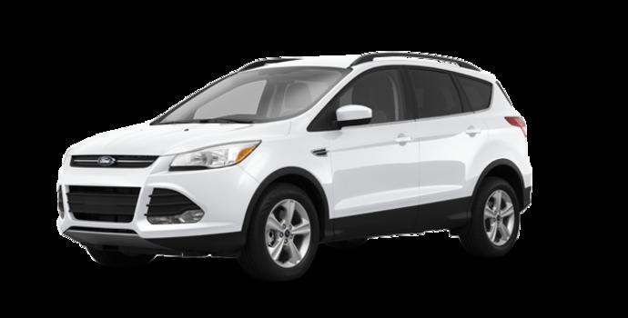 2016 Ford Escape SE | Photo 6 | White Platinum