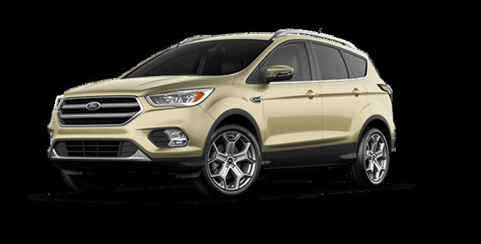 2017 Ford Escape TITANIUM   Photo 6   White Gold