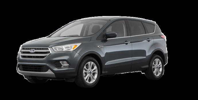 2018 Ford Escape SE | Photo 6 | Magnetic