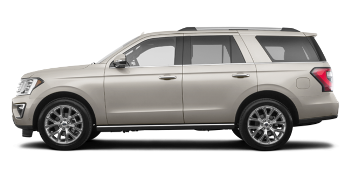 2018 Ford Expedition LIMITED | Photo 4 | White Gold