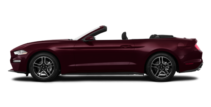 2018 Ford Mustang Convertible EcoBoost | Photo 4 | Royal Crimson Metallic Tinted Clearcoat