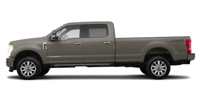 2018 Ford Super Duty F-250 LIMITED | Photo 4 | Stone Gray
